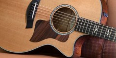 Taylor Guitars 614ce First Edition Sweepstakes
