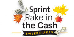 Sprint Rake in the Cash Sweepstakes