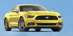 Wayne Akers 2019 Ford Mustang Giveaway