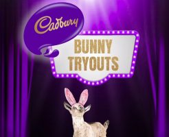 Cadbury Bunny Tryouts Contest