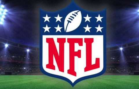 NFL Fan of the Year Contest