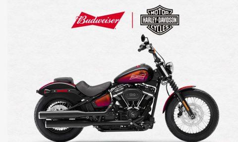 Budweiser Harley-Davidson Sweepstakes